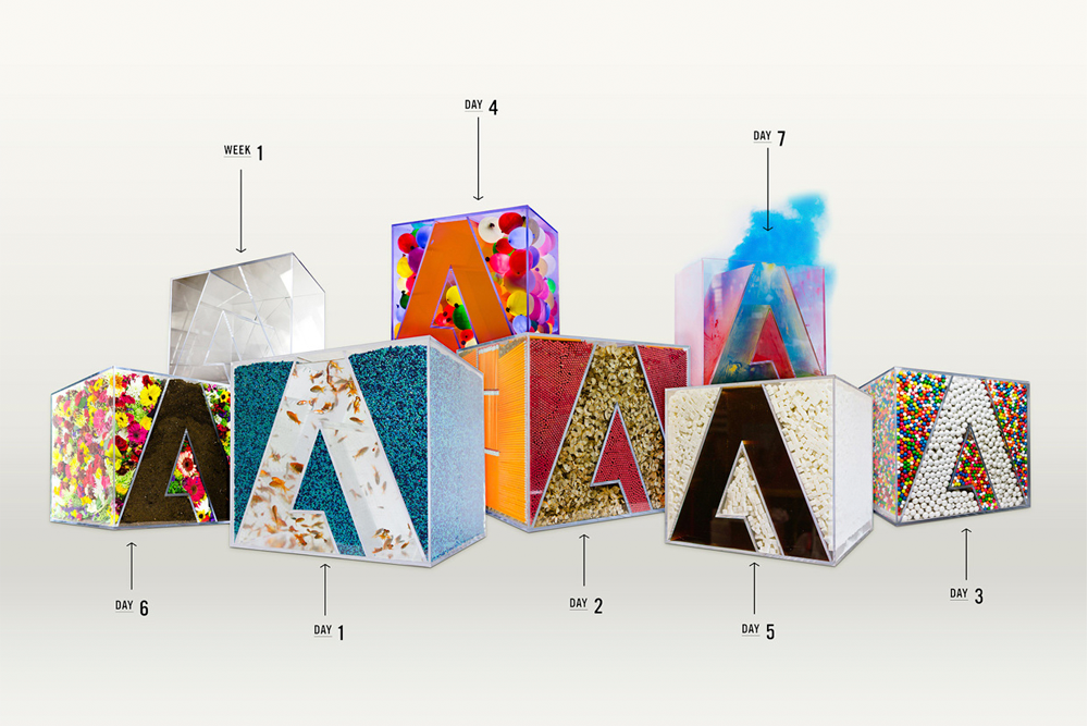 7 días de diseño logotipo de Adobe